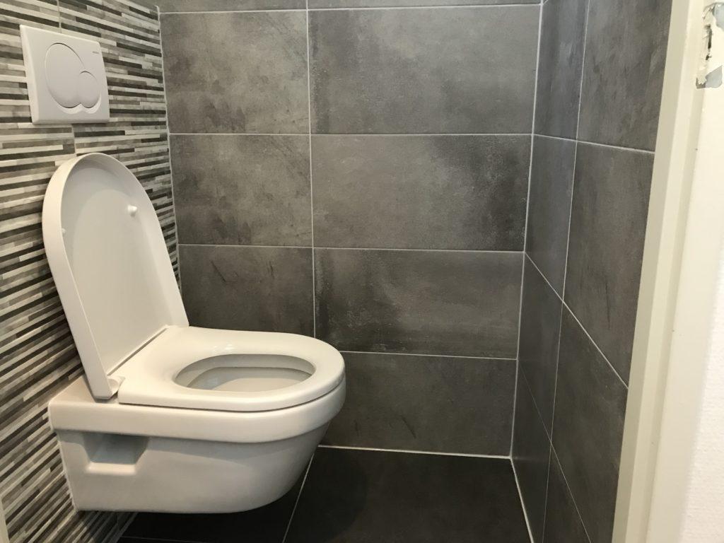 Hangtoilet sanitair tegelwerk - Home Repair - Timmerwerk en onderhoud 04